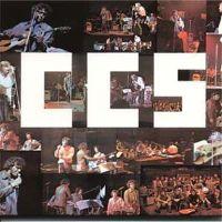 CCS II - Collective Consciosness Society