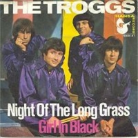 Night Of The Long Grass - The Troggs