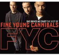 FYC - She Drives Me Crazy - The Best Of The Fine Young Cannibals
