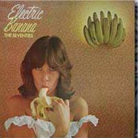 The Electric Banana aka The Pretty Things
